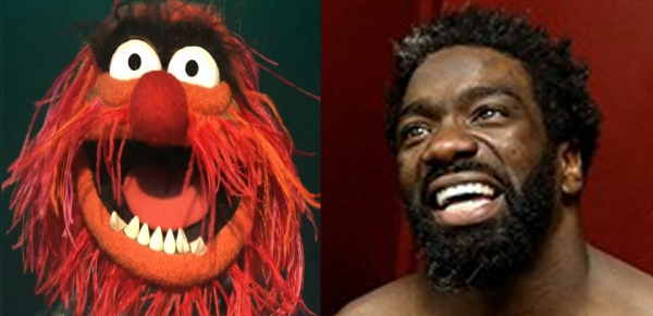 ed reed and muppets animal separated at birth